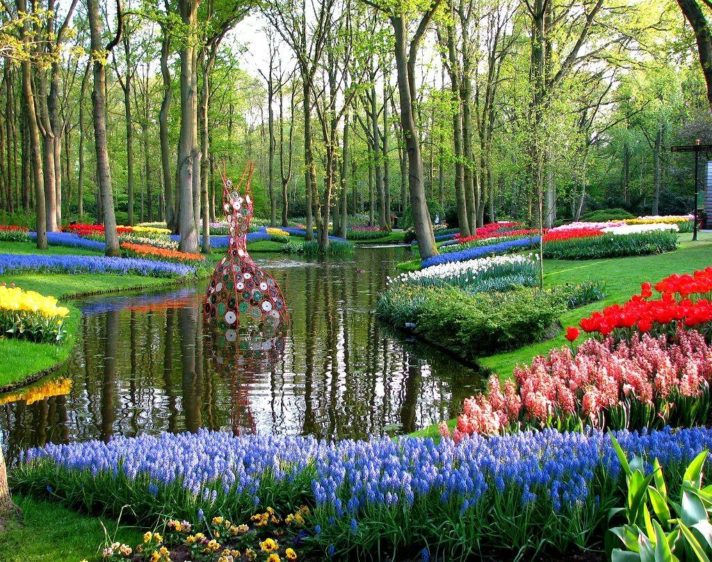 gollandiia-korolevskii-park-cvetov-kekenhof